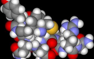 Вазопрессин (гормон): функции и роль в организме