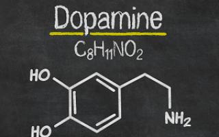 Для чего человеку нужен гормон дофамин? И как его повысить
