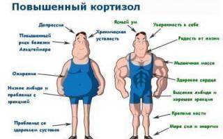 Определение и описание гормона кортизола